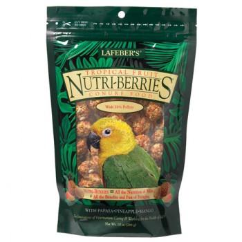 Tropical Fruit Nutri-Berries Conure
