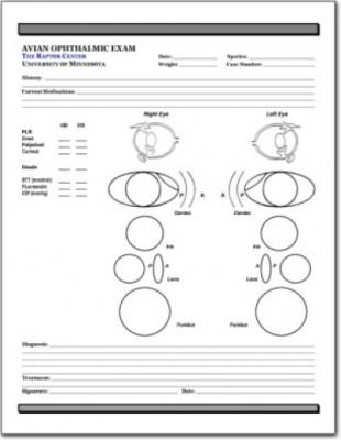 avian eye exam form 2 lafebervet