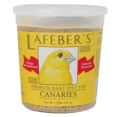 Red-Factor Canary Personality, Food & Care – Pet Birds by Lafeber Co