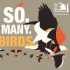 new jersey Audubon event poster