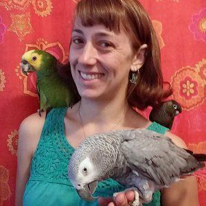 Stephanie Lamb, DVM, DABVP (Avian Practice)