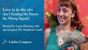 Dr. Lamb February 5 webinar