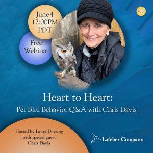 webinar 50 slide promotes Chris Davis' discussion of pet bird behavior