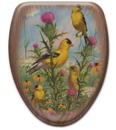 BirdToiletSeat