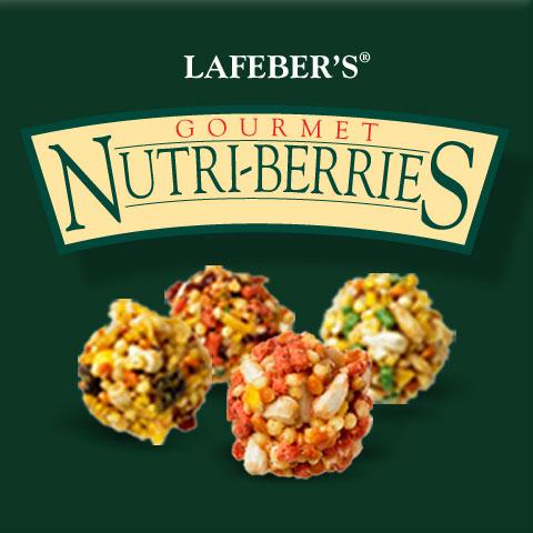 Gourmet Nutri-Berries