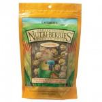 Garden Veggie Nutri-Berries Parrot