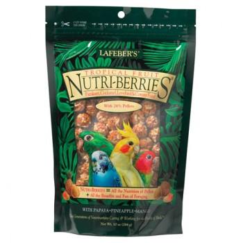 Tropical Fruit Nutri-Berries small bird