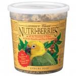 Nutri-Berries Conure