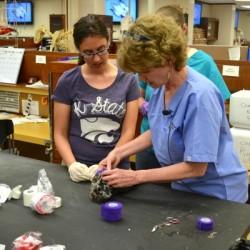Dr. Ponder leads a bandaging wetlab