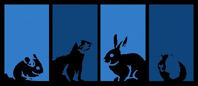 AEMV animals cropped