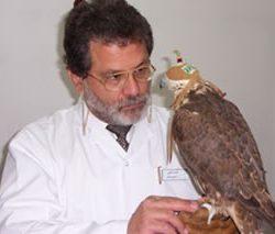 Jaime Samour MVZ (Honours), PhD, DECZM (Avian), FRSB