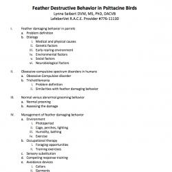 FDB outline screenshot