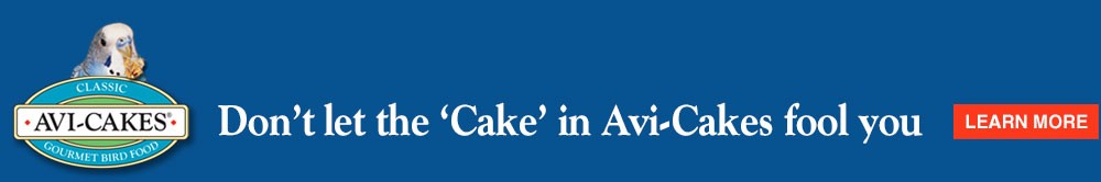 "Don't let the ""cake"" in Avi-Cakes fool you"