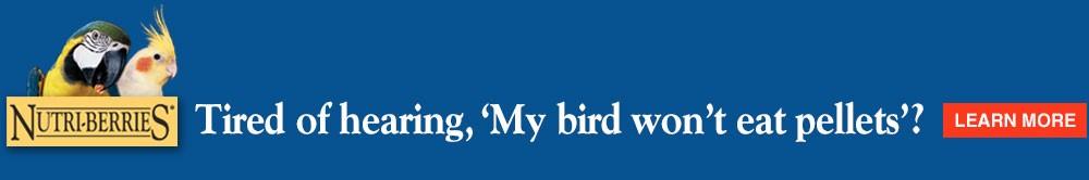 "Tired of hearing, ""my bird won't eat pellets""?"