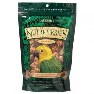 conure tropical fruit nutri-berries