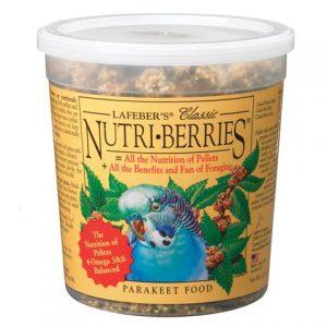 Nutriberries Parakeet