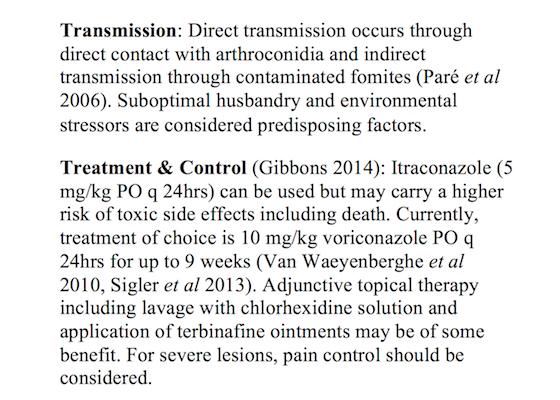 Slide 12 Transmission Tx Control