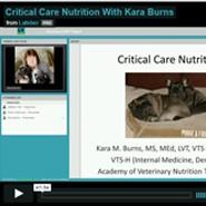 Critical Care Nutrition