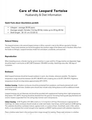 Leopard Tortoise Information Sheet