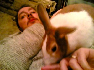 Shown here, a rabbit lightly nipping his human's finger.
