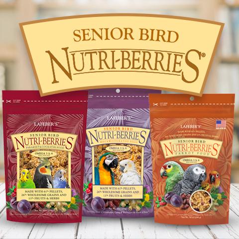 Senior birds