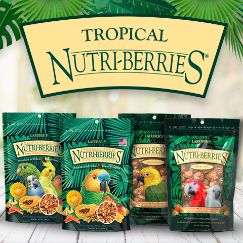 Tropical Fruit Nutri-Berries