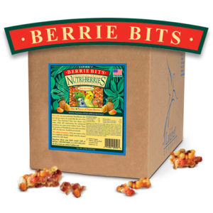 Tropical Berrie-bits for small birds